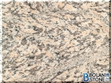 China Tiger Skin Rust Granite